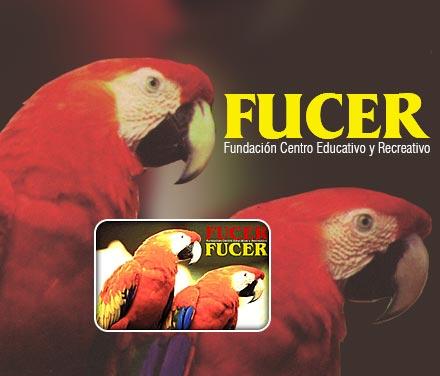 Tarjeta Fucer